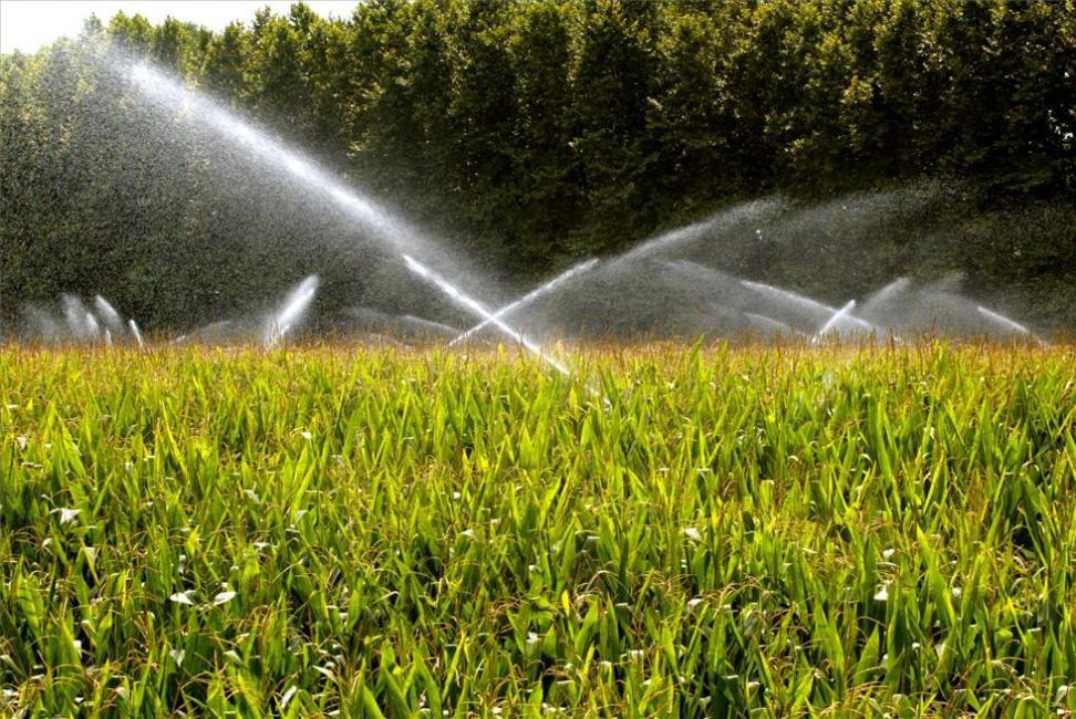 Sondeos de agua para riegos, agricultura y ganadería